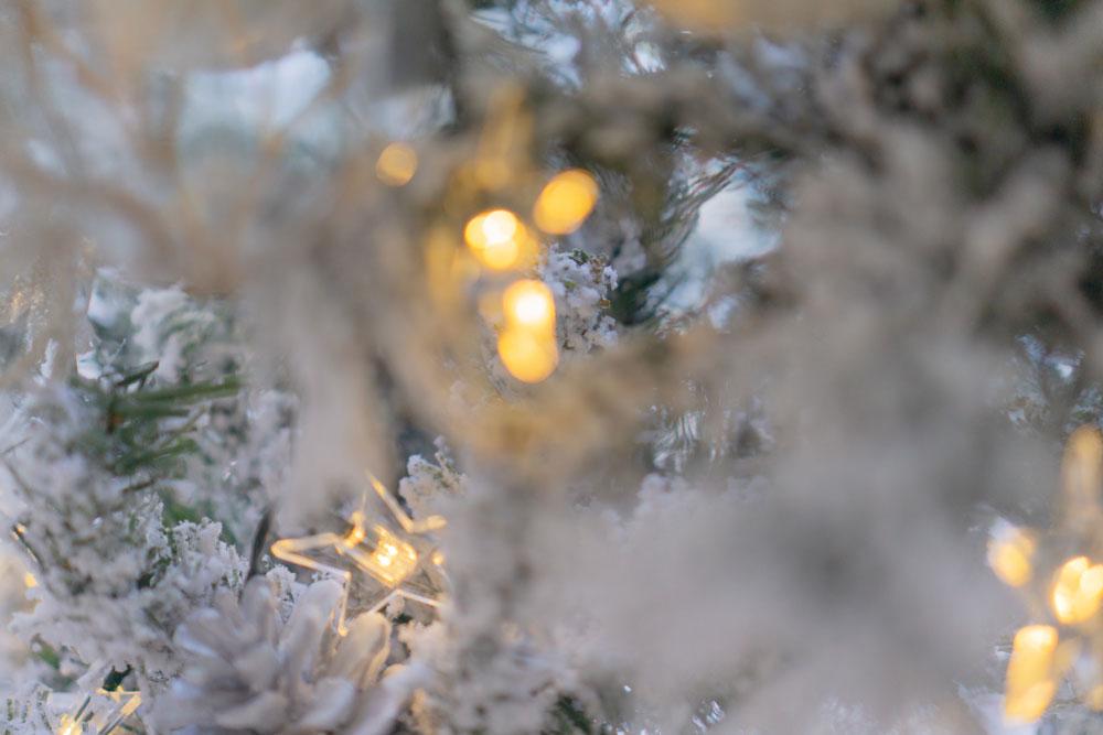 Moska-Design-Christmas-Edit_n6